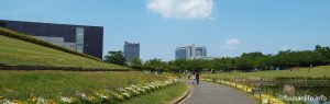 千葉県印西市内公園の写真
