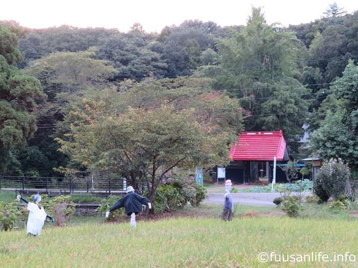 結縁寺と案山子