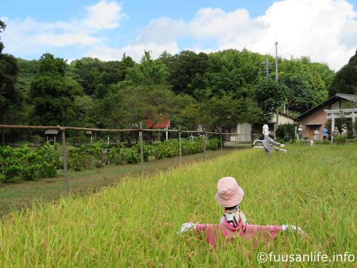 案山子と結縁寺の写真