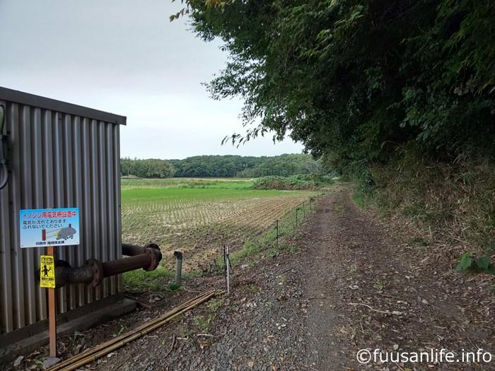 田んぼ横のイノシシ除け電気柵と畦道の写真