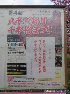 八千代新川千本桜まつり中止のポスター写真